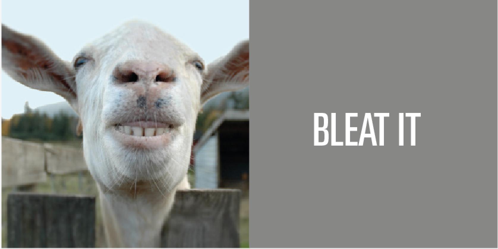 bad goat jokes sajithansar